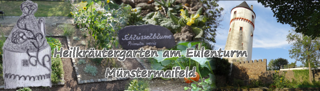 Heilkräutergarten am Eulenturm